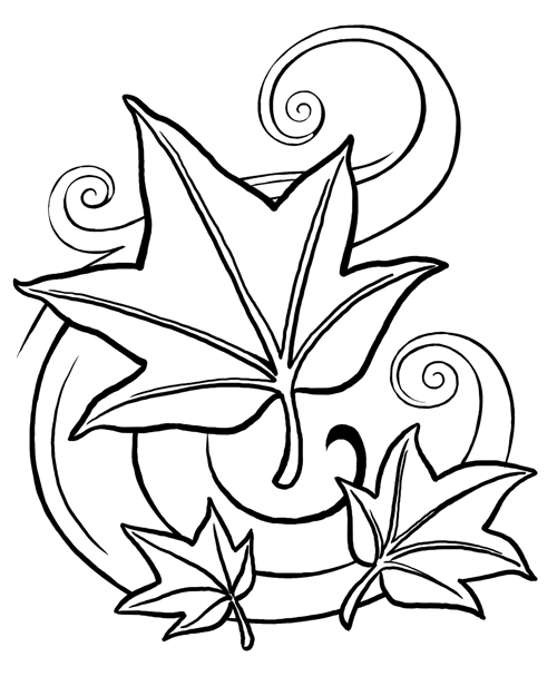 Flower Colouring Pictures 2