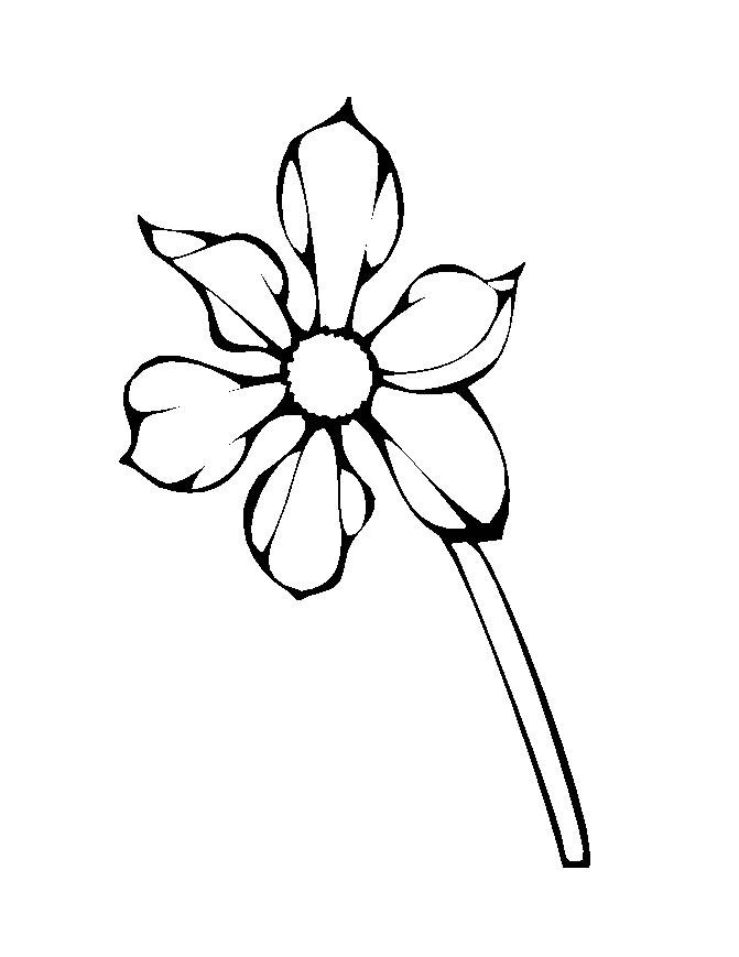 Flower Colouring Pictures 9